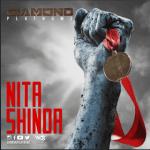 MP3 : Diamond Platnumz - Nitashinda