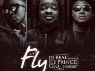 MP3: DJ Real X Ice Prince X CDQ - Fly