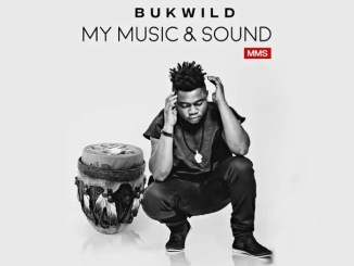 MP3: Bukwild – Gum Body