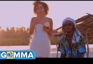 MP3 + VIDEO: Magix Enga - Some Love