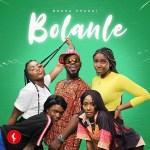 MP3: Broda Shaggi - Bolanle (Cover)