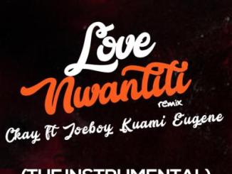 Instrumental: CKay - Love Nwantiti