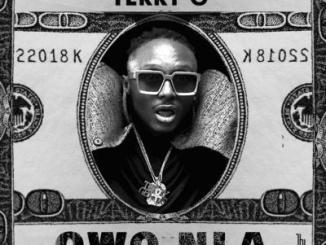 MP3: Terry G - Owo Nla
