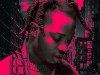 Lyrics: Naira Marley - As E Dey Go (Lyrics)