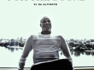 K1 De Ultimate - Fuji the Sound EP