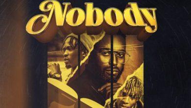Photo of DJ Neptune – Nobody (Icons Remix) ft. Laycon x Joeboy