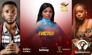 BBNaija 2020: Tolanibaj, Wathoni & Brighto all evicted (video)