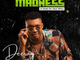 DOWNLOAD MP3: Deeray – Madness