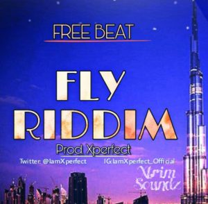 Download Freebeat:- Fly Riddim (Prod By Xperfect)