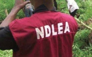 How NDLEA Uncovered Cocaine Stashed At Anambra Monarch's Palace