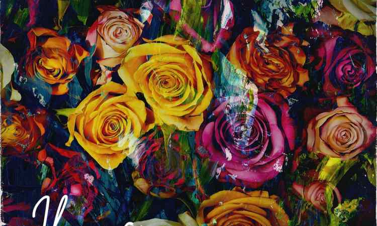 Ikenna - Bed of Roses Mp3 Download Audio