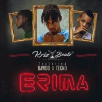 AUDIO: KRIZ BEATZ- ERIMA ft. DAVIDO × TEKNO