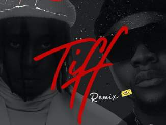 Download mp3: Dammie vee - Tiff Remix Ft. Kizz daniel