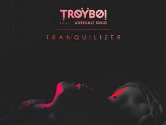 Download mp3: Troyboi - Tranquilizer Ft. Adekunle Gold