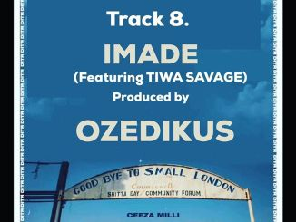 Download Mp3: Ceeza Milli - Imade Ft. Tiwa Savage
