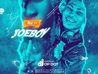Mixtape: DJ OP Dot - Best Of Joeboy Mix