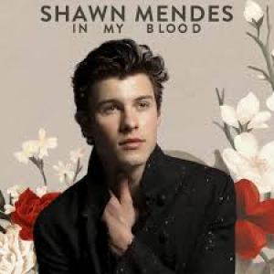 Download Mp3: Shawn Mendes - In My Blood