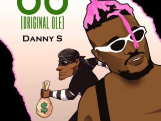 Download: Danny S – O.O (Original Ole) mp3