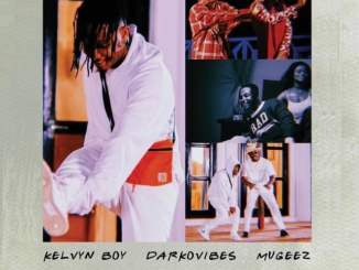 Download mp3: Kelvynboy – Momo ft. Darkovibes & Mugeez