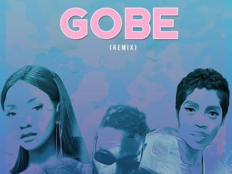 Download mp3: L.A.X – Gobe (Remix) ft. Tiwa Savage, Simi
