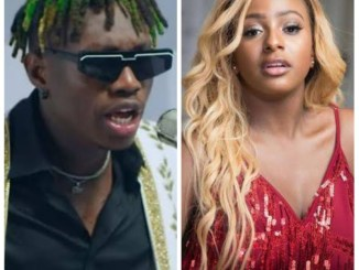 What you need to know about DJ Cuppy, Zlatan feud