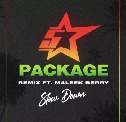 Download mp3: King Promise – Slow Down (Remix) ft Maleek Berry