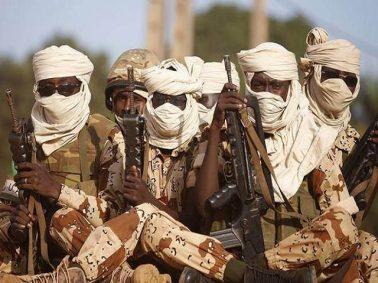 "Boko Haram Commander, Other Insurgents ""Unconditionally"" Surrender In Borno"