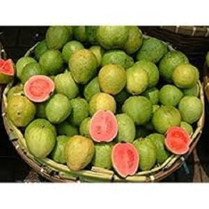benefits-guava-seeds