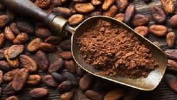 amazing-benefits-cocoa