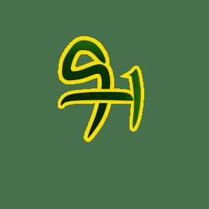 9ja tide logo