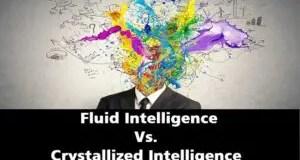 Fluid Intelligence and Crystallized Intelligence