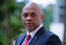 Tony Elumelu Biography & Net Worth: Cars, Houses And Facts