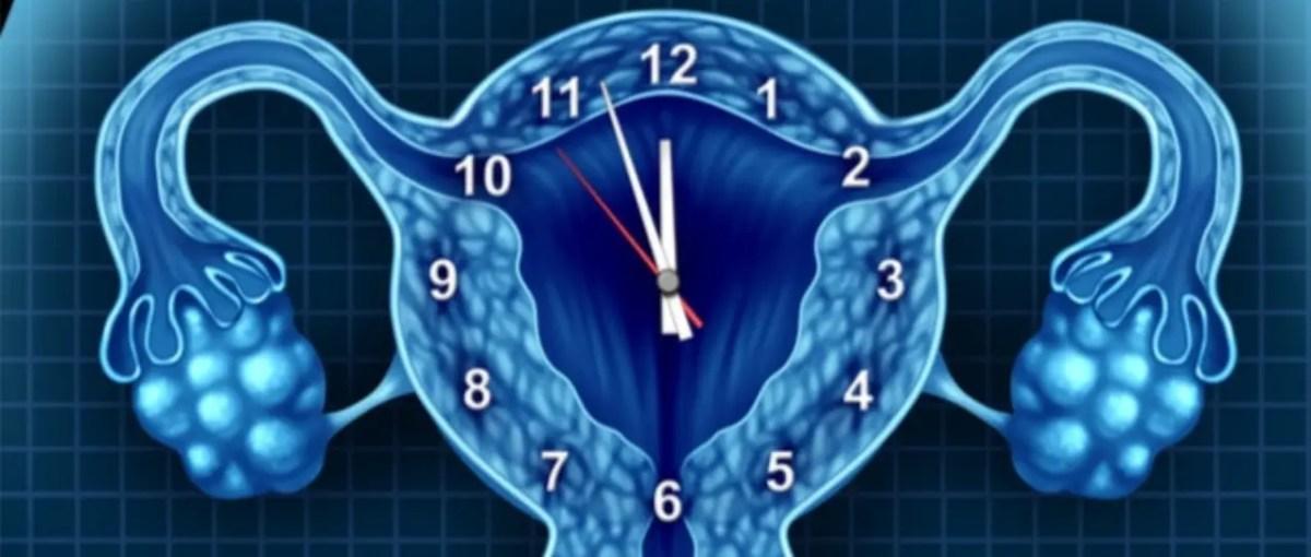 ما هو هرمون البروجسترون وما هو أثر انخفاضه على جسم المرأة؟