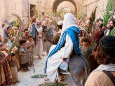 He Wept as They Welcomed Him-The Hope and Sorrow of Palm Sunday
