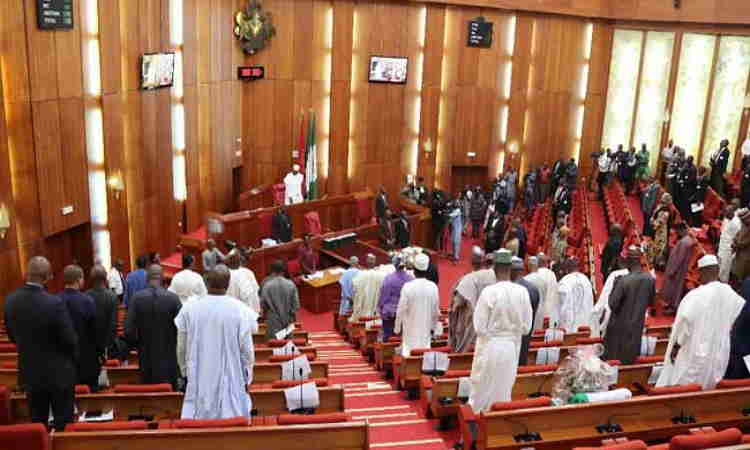 Nigerian Senate during plenary