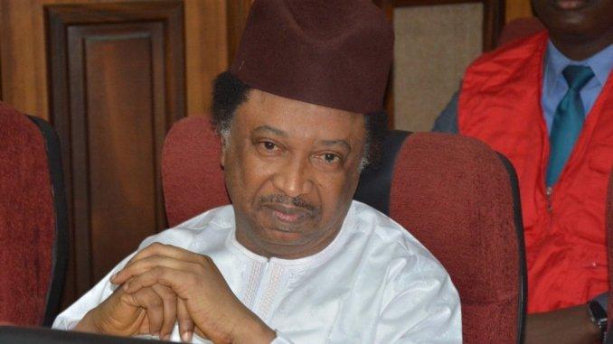 Abuja High Court Moves To Revoke Shehu Sani's Bail