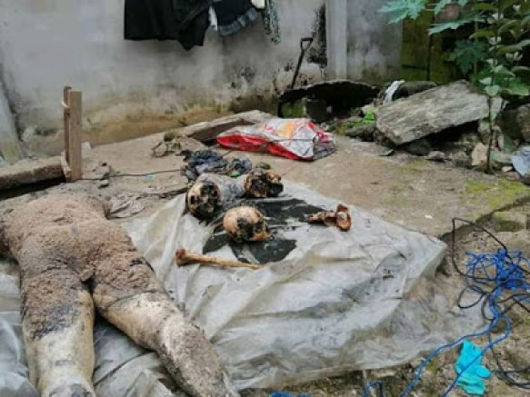 Serial Killer Arrested, Four Decomposing Bodies Recovered (Viewer's discretion advised)