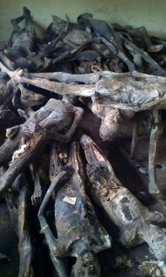Dead bodies dried like stock fish discovered in police raid in Togo