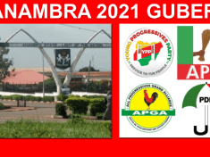 Anambra State Governorship Election