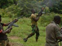 Fresh Bandit Attacks in Zamfara state