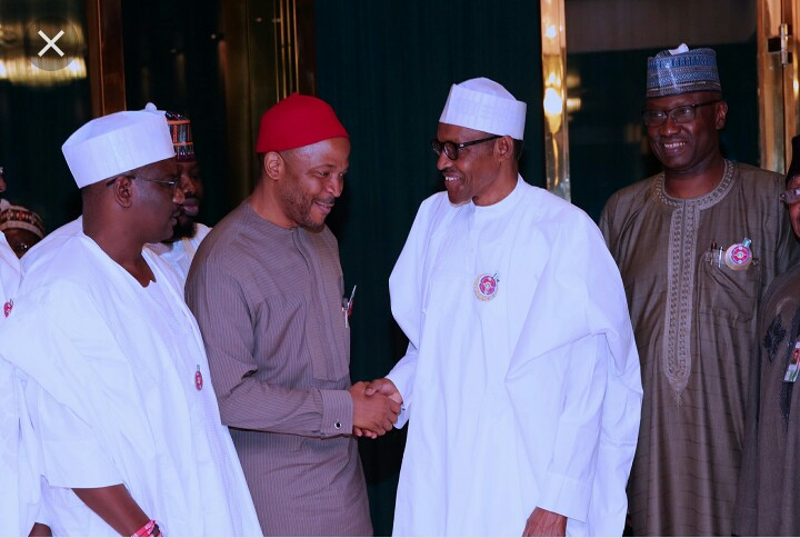 Hon. Chukwuemeka Nwajiuba shakes hand with President Muhammadu Buhari