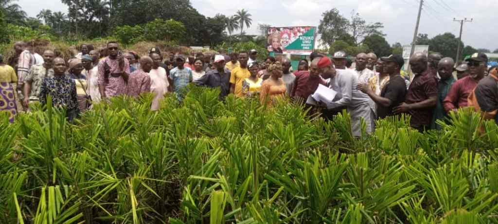 CHIEF DAMIAN COLLABORATES WITH IMO GOVERNMENT ON AGRICULTURAL DEVELOPMENT – 9News Nigeria