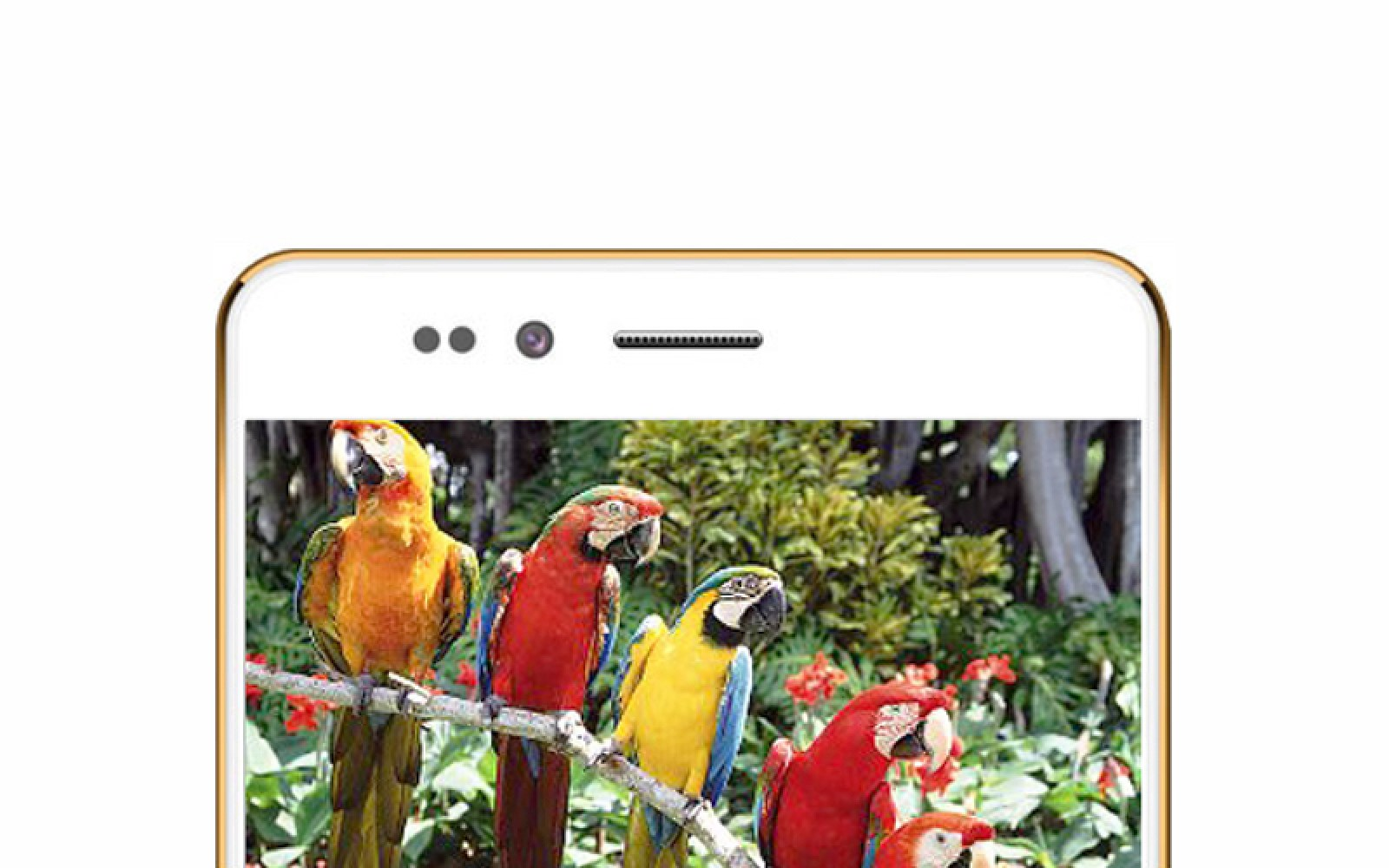 Freedom 251 is a 4-inch Android smartphone with quad-core processor that costs less than $4