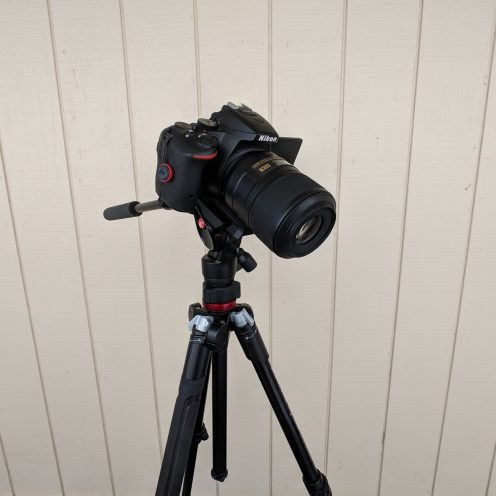 Pixel 2 + Moment Wide Lens