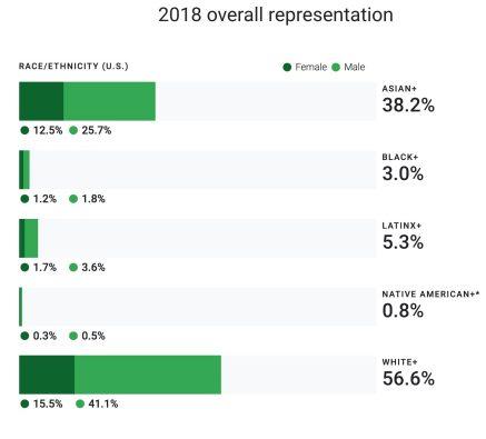 google-2018-overall-representation