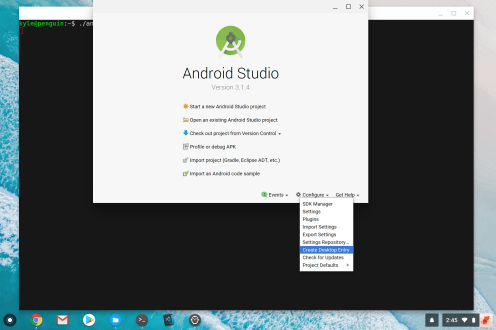 Chrome OS Android Studio Create Desktop Entry