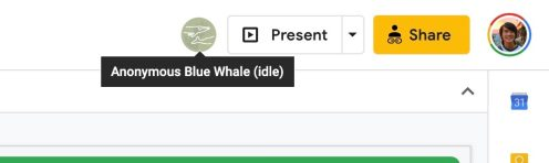 Google Docs endangered animals