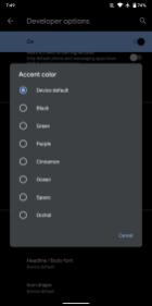 android-10-pixel-customization-1