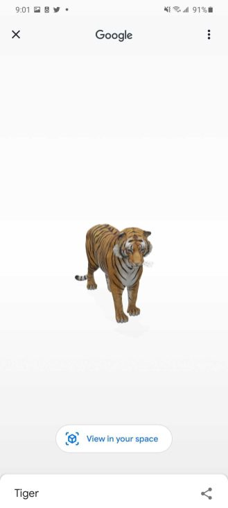 google 3d animals tiger view in your space