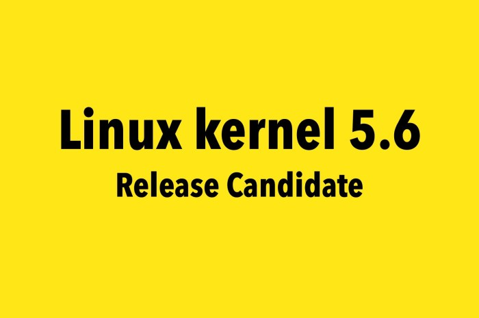Linus Torvalds Kicks Off the Development of Linux Kernel 5.6, First RC Is Out Now